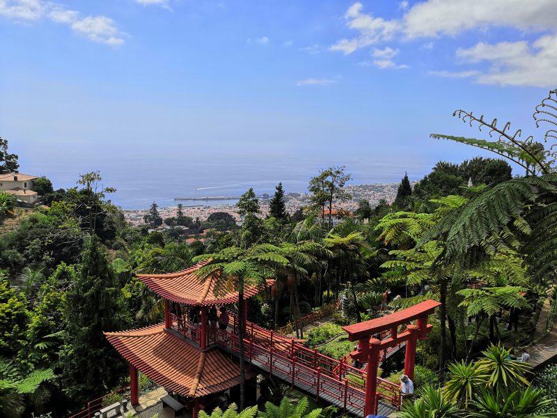 Ogrody Botaniczne w Monte