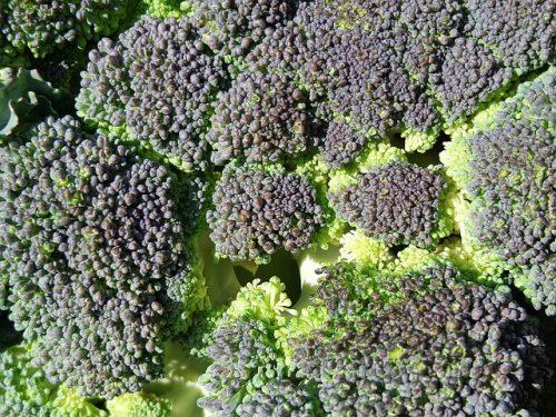 Sezonowe warzywa i owoce: listopad